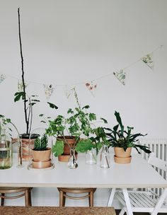 Use your table to display a collection of indoor plants #IKEAIDEAS