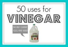 Conoce los usos del vinagre y de los agentes de limpieza naturales.