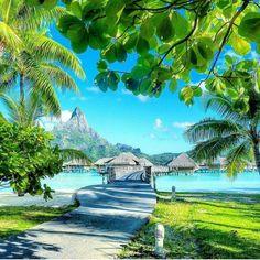 Tahitian summer..