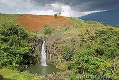 tropische landschappen - Google zoeken