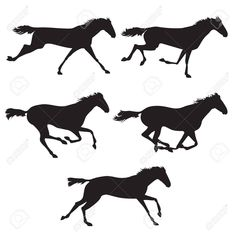 Illustration of Collection of horse race, horse jump and horse run. Silhouettes of horses. Black horses on isolated background. Set of wild horses. Vector horse collection vector art, clipart and stock vectors. Horse Template, Wild Horses Running, Horse Silhouette, Black Horses, Banner Printing, Gelatin, Horse Art, Image Photography, Horse Racing