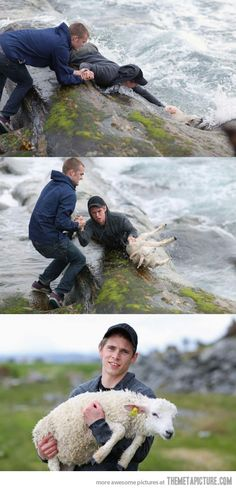 A great big YAYYYYYYYYYY to the Two Norwegian guys for rescuing a baby lamb drowning in the ocean!