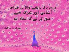 haq Allah, Pajama Pants, Pajamas, Fashion, Pjs, Moda, Sleep Pants, Fashion Styles, Pajama