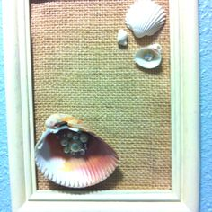 Shell decor for church project