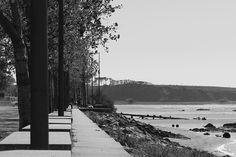 Canon EOS 1200D #gaia #porto #dslr #portugal #photographylovers #photography #nature #river #douro #like #picoftheday #nice #portugaldenorteasul #portugalemperspectiva #portugalcomefeitos #shooters_pt #exploretocreate #justgoshoot #liveauthentic #igersportugal #instadaily #instagram #igers #igersporto #igers_porto #instagood #canon #shawacademy #shawacademypt by davidvonoliveira