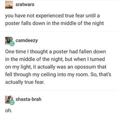 I used to have this hatsune miku poster right above my bed and one night when I was sleeping it fell down and hit me in the face. I jumped awake and I might have screams, but I'm not sure. Funny Tumblr Posts, Tumblr Stuff, My Tumblr, Funniest Pictures, Funny Pictures, Opossum, Best Memes, Dankest Memes, Funny Memes