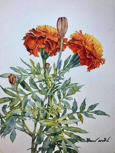 Botanical Illustration, Botanical Prints, Watercolor Illustration, Watercolor Flowers, Watercolor Paintings, Watercolours, Watercolor Architecture, Beautiful Paintings, Flower Art