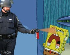 Funny Pepper Spraying Cop Meme (14)