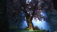The Eldergleam #games #Skyrim #elderscrolls #BE3 #gaming #videogames #Concours #NGC