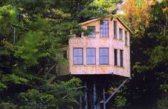 The concept that he started out with was a small platform in a tree with four walls, a roof and one window. What he ended up with was a two-storey timber frame tree house twenty two feet off the ground, with two decks, twenty one windows, a drawbridge, and a room dedicated to the playing of chess. It also took almost four years to build.                   What can I say? it was a blast. At least it was for me because I got to help, but was not paying the bills. You only have to look at it to…