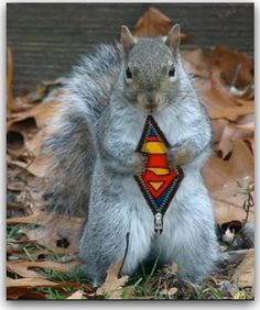 wait, what? i get it is superman, but what is it? is it something in a squirrel costume? because it is zipping open the squirrel....