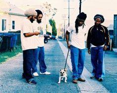 Kymani, Damian, Stephen and Ziggy with an adorable dog.