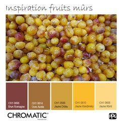 Les fruits gorgés de soleil nous inspirent une harmonie chaleureuse et vitaminée, source de vitalité! www.chromaticstore.com