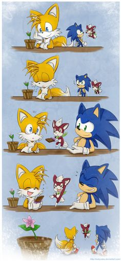 Chip, Tails and Sonic. I guess that flower is shy...:D (Now) I just realized that flower is actually Cosmo...HOW WAS I SO BLIND?!