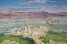 """Israel: """"Color and texture in the Dead Sea,"""" writes photographer Doron Nissim."""