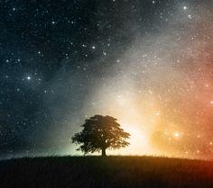 Magia nocy