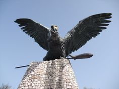 Hungary History, Bald Eagle, Beautiful Places, Pokemon, Spirit, Indian, Thoughts, Ideas