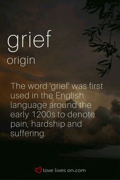 65 Best The Dictionary Of Obscure Sorrows Images Beautiful Words