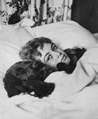 0 brigitte bardot in bed and dog