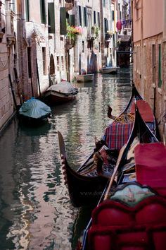 Venice || Italy  http://www.amazon.com/La-TAVOLA-Adventures-Misadventures-American/dp/1463618123