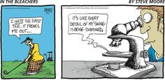 In the Bleachers Comic Strip, July 19, 2015     on GoComics.com