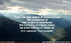 Lawrence on terra, or earth, in Terra Incognita D H Lawrence, Passion For Life, Word Nerd, Albert Einstein, Book Quotes, Consciousness, Inspire Me, The Dreamers, Wise Words