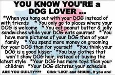 You know you're a dog lover . I think I am, but I'm not guilty of all of these :)