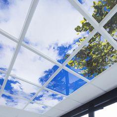 Vishandel De Haan - Rotterdam | Lumick Standard   www.lumick.com    Interior Design - Healing Environment - Office Design - Healing Office  #skyceiling #skypanel #cloudceiling #wolkenplafond #fotoplafond