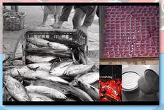 Eka Seafood Indonesia