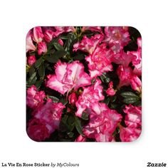 Spruce up any event with spectacular stickers Pink from Zazzle. Floral Tie, Floral Design, I Shop, Stickers, Inspired, Flowers, Pink, Gifts, Inspiration
