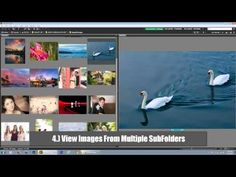 Top Five Tips for Maximizing Adobe Bridge CS6 and Adobe Camera Raw