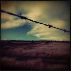 """Lens: Sergio Film: DC """"Our roadtrip in NZ was a turbulent one (think a very rough landing and a bout of gastro) and the weather was …"""" Catherine Cash Best Smartphone, Mountains, Bergen"""