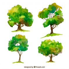 Set of trees in watercolor style Free Vector Tree Watercolor Painting, Watercolor Paintings For Beginners, Watercolor Leaves, Watercolor Cards, Watercolor Landscape, Watercolor Illustration, Floral Watercolor, Watercolor Portraits, Green Leaf Background