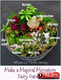 How to make a whimsical miniature fairy garden with minimal accents using purslane, asparagus fern, hens and chicks, cel Fairy Garden Pots, Indoor Fairy Gardens, Dish Garden, Fairy Garden Houses, Miniature Fairy Gardens, Gnome Garden, Shade Garden, Indoor Mini Garden, Fairy Gardening