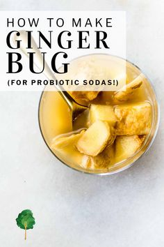 How to make ginger bug for homemade, naturally fermented sodas. For this easy recipe, all you need is fresh organic ging Probiotic Foods, Fermented Foods, Chutneys, Kombucha Mother, Ginger Bug, Ginger Food, Fermentation Recipes, Ginger Benefits, Honey And Cinnamon