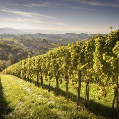 Wassererlebnis für die ganze Familie in der Steiermark: 3 Tage im 3-Sterne H2O Hotel Therme Resort mit Frühstück + Thermeneintritt ab 99 € (statt 145 €) - Urlaubsheld | Dein Urlaubsportal