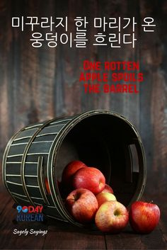 Check out today's #Korean Sagely Saying!  This is a Korean proverb that means One rotten apple spoils the barrel.  Cant read Korean yet? Free Korean reading guide (link in bio)   Repin and leave a comment below with your opinion about this sagely sa