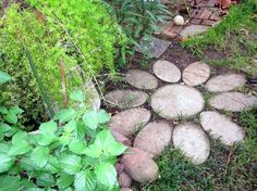 Stepping stones and paths you can make… 7 stepping stone projects you make from scratch or decorate from purchased stones.
