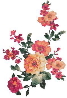 Bunch Of Flowers, Big Flowers, Botanical Drawings, Botanical Illustration, Flower Frame, Flower Art, Botanical Flowers, Textile Prints, Flower Prints