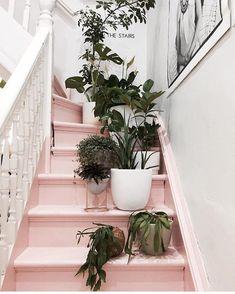 pink stairs & greenery