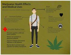 009 Marijuana Effects on the Body Handout Health Pinterest