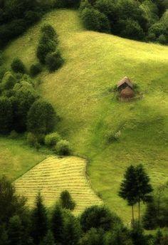 Fundata este o localitate în județul Brașov, Transilvania, România. Este reședința comuneiFundata.  Situată la altitudinea de 1304 m, Fundata este cea mai înaltă localitate din țară.  Aflată la mijlocul distanței intre Bran și Rucăr, pe culoar, aceasta este străjuită de munții Bucegi și munții Piatra Craiului.