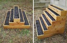 Good Things in Small Boxes: Urban Garden, Tiny Footprint - WebEcoist - Stair step raised garden bed for small garden space Small Space Gardening, Garden Spaces, Garden Ideas For Small Spaces, Raised Garden Beds, Raised Beds, Raised Gardens, Organic Gardening, Gardening Tips, Urban Gardening