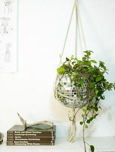 disco ball hanging plant // genius
