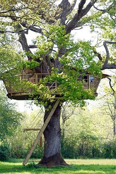 Image: Treehouse in Le Pian Medoc, southwestern France. France's Natura Cabana company rents various cabins perched in the trees for ecological holidays. Adult Tree House, Tree House Plans, Treehouse Cabins, Treehouses, Eco Environmental, Yurt Home, Eco Buildings, Tree Hut, Cool Tree Houses