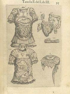 Page 95 of Juan Valverde de Amusco's Anatomia del corpo humano, 1560 featuring two upper bodies in armor displaying digestive systems under the muscles of the abdomen. From the collection of the National Library of Medicine. Visit: http://www.nlm.nih.gov/exhibition/historicalanatomies/valverde_home.html