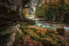 Autumn at the Taugl - null
