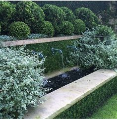 """French Bronze spout - """"trough-style"""" water feature enhanced by tonal, clipped green planting"""