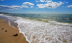 Cape Cod It's not far to the islands... and it's time to get out there and see the world. Take a book along