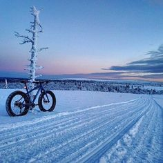 (Or Tuesday's depending on where you live) aren't always the best things, so here's a little motivation of what next weekend could hold for you, courtesy of and his Kona Wo. Best Mountain Bikes, Mountain Bike Trails, Fat Bike, Kona Bikes, Winter Beach, Bike Photo, What Next, Bike Life, Veils